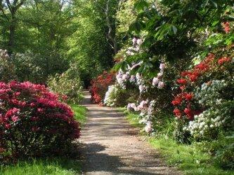 FENG SHUI krundil ja aias
