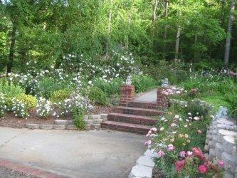 Pilt 5 - Lilledes on eriline jõud