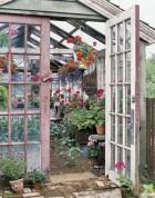 Kui sinul juhtub aias olema vana kasvuhoone...