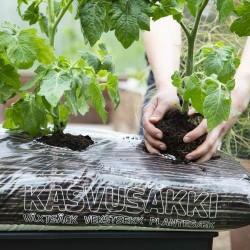 Biolani Kasvukott - pane tomatid, kurgid ja melonid rõdule kasvama