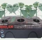 Biolani Kasvukott - nutikas, pane kasvõi melonid rõdule kasvama