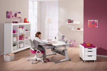 Pilt 11 - Reguleeritava kõrgusega kirjutuslaud ja tool - hea lahendus lapse tuppa!