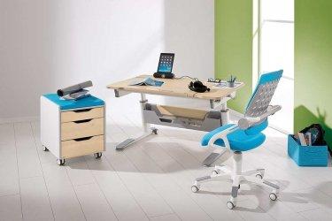 Pilt 9 - Reguleeritava kõrgusega kirjutuslaud ja tool - hea lahendus lapse tuppa!