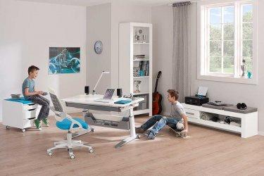 Pilt 12 - Reguleeritava kõrgusega kirjutuslaud ja tool - hea lahendus lapse tuppa!
