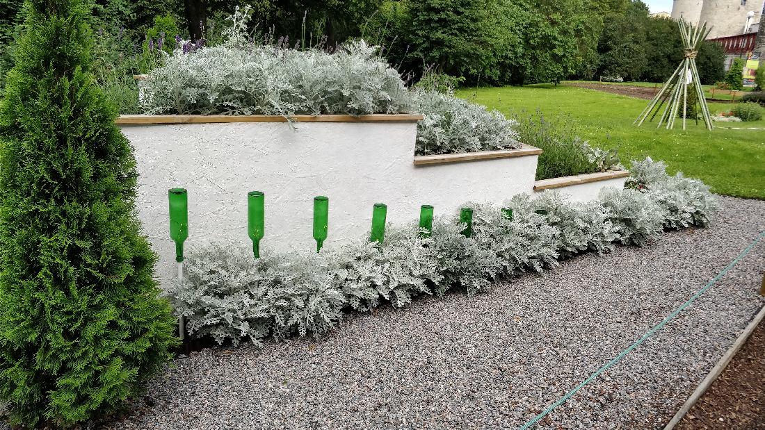Kogu inspiratsiooni aiakujunduseks Tallinna Lillefestivalilt 2018