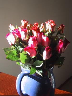 "Lilled ""ilusalongis"" läbi Feng Shui prisma"