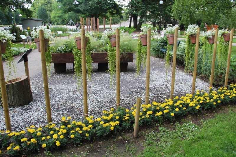 Pilt6-Hooliv aed