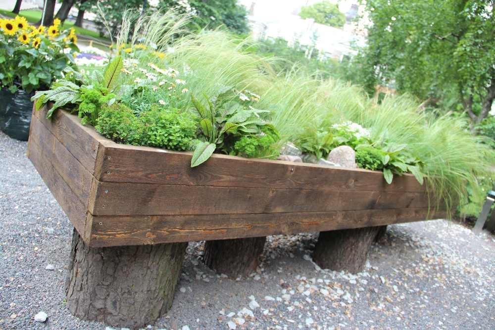 Pilt2-Hooliv aed