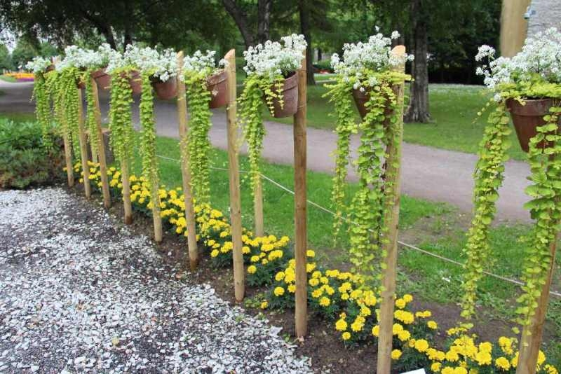 Pilt5-Hooliv aed