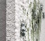 Lõpp vetikarohelistele välisfassaadidele AquaBalance fassaadikrohviga