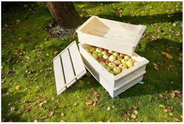 Pilt 2 - Meisterda ise õunakast
