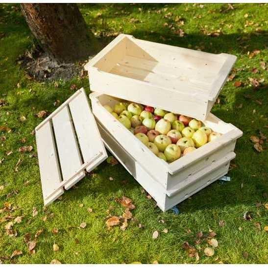 Meisterda ise õunakast