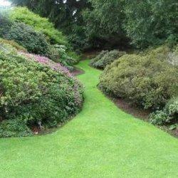 Kuidas planeerida aeda? Tarbeaed on moes