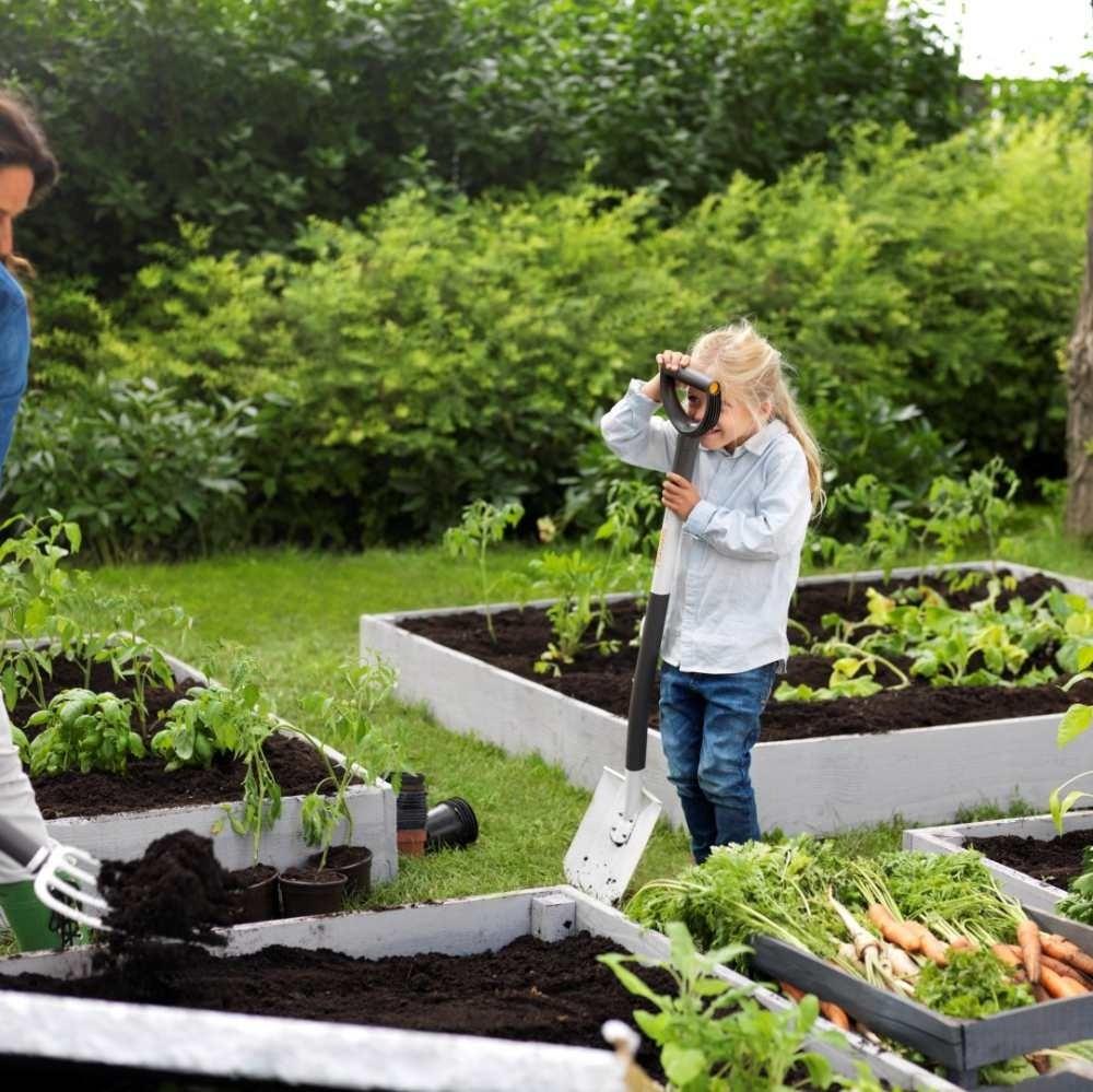 Õigete taimede koos kasvatamine tagab saagirikkuse