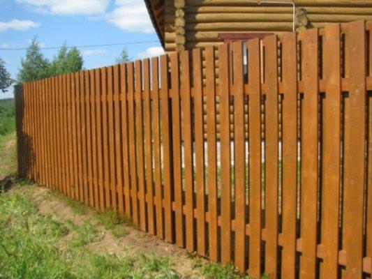 Pilt 7 - Vertikaalne puitaed