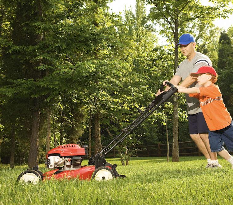 Kesksuve aiatööd: kaitse, väeta ja tolmenda