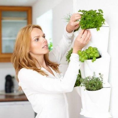 Kastmissüsteemiga taimepotid