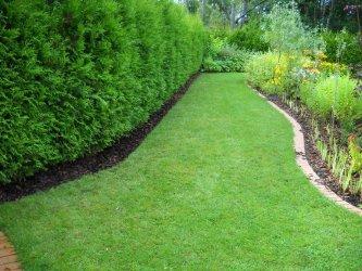 Pilt 6 - Peenarde servad korda. Väikese aia kujundamine.