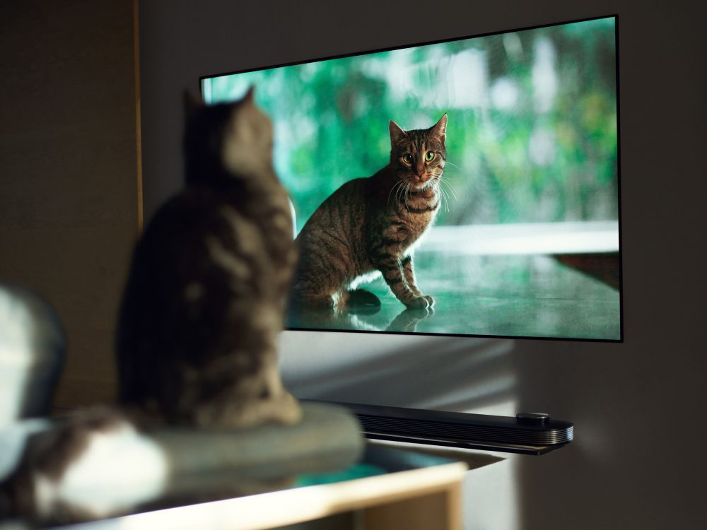 6 lihtsat soovitust, mille abil kodused filmiõhtud tõeliseks elamuseks muuta