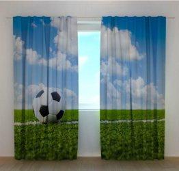 Pilt 3 - Jalgpall - fotokardin