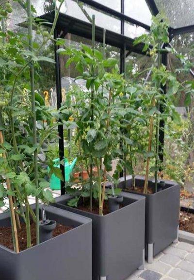 Pilt 5 - Kastmissüsteemiga taime- või lillepotid. Nendega saavutab suhteliselt hooldusvaba taimekasvatuse, ehk su taimed on olenevalt sordist kuini 4 nädalat hoitud. Seda nii sise- kui ka välitingimustes.