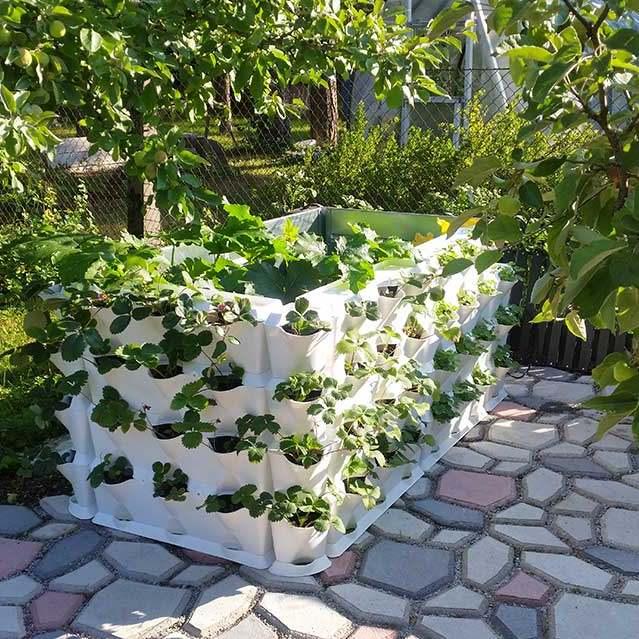 Kui peenramaal enam ruumi ei ole, saab aiaääred või muud seinapinnad vertikaalselt appi võtta ja seal mida iganes kasvatada – maasikaid, ürte, lilli.