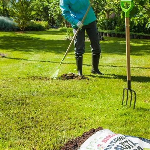 Loe, kuidas muru talvekahjusid likvideerida, sammalt tõrjuda ja üldist seisukorda parandada!