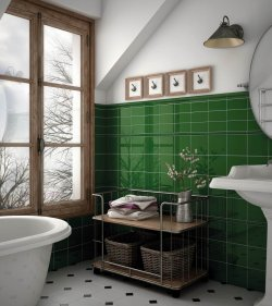 Pilt 5 - Evolution Victorian green bath