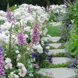 31 - Miks rakendada feng shui bagua tsoonide plaani aiakujunduses?