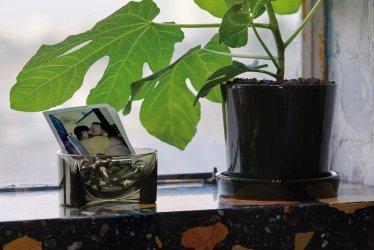 Pilt 6 - Iittala Kuru – dekoratiivkausid, mis toovad esile igapäevased esemed