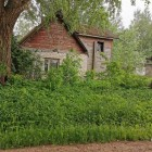 Kuidas aia kujundamisega alustada?