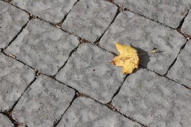 Pilt 5 - Verona-kivet