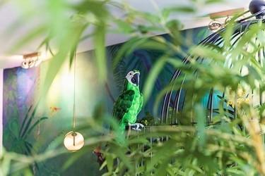 Pilt 17 - Parrot MiniBar