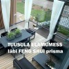30.09 Seminar: Tuusula elamumess feng shui kontekstis