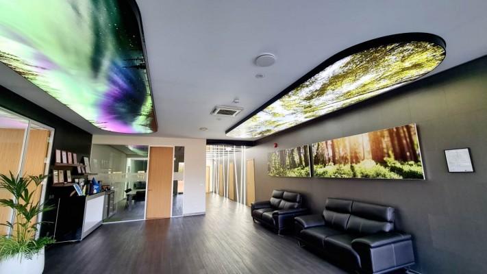 Pingmaterjaliga saab luua kauneid erilahendusi lagedel ja seintele - 4