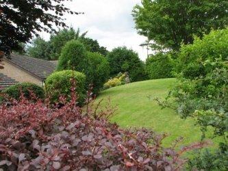 Pilt 4 - Tegevuskava algajale aiakujundajale-istutajale