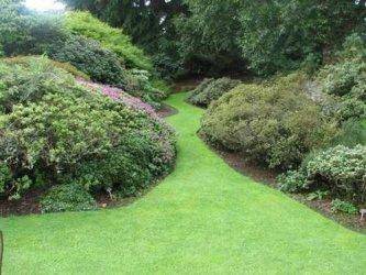 Pilt 20 - Tegevuskava algajale aiakujundajale-istutajale