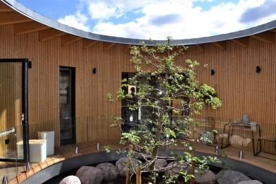 Messi pärl oli ümmargune eramu, kus tsentris terrass, mille keskel omakorda ilus dekoratiivpuu - 2