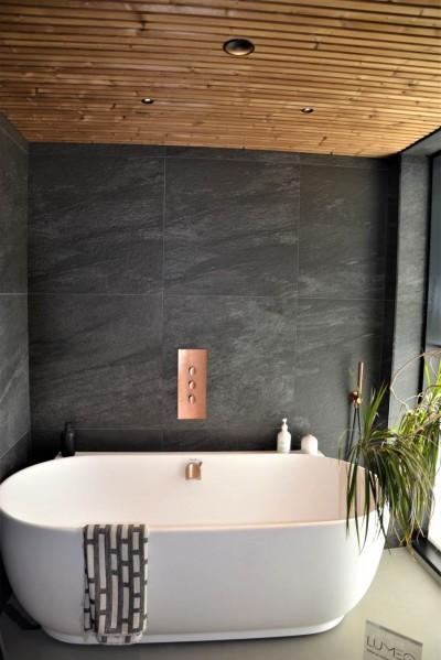 Vannituba - puitu kasutati igal pool pesu- ja eluruumides - 3