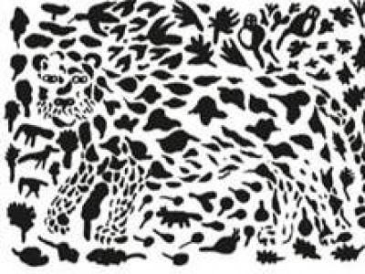 Gepard - 6