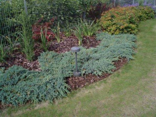 Pilt2-HARJUMAA HALJASTUS OÜ aiakujundusprojektid, haljastustööd, piirdaiad