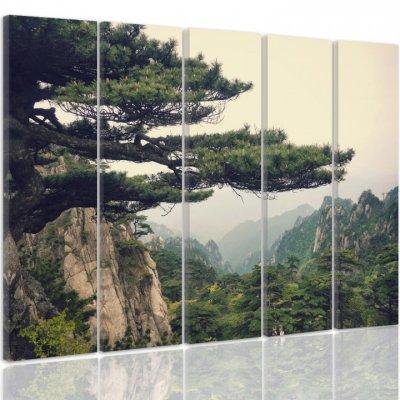 11 - Fototapeet.eu tapeedid, seinapildid, fotokardinad