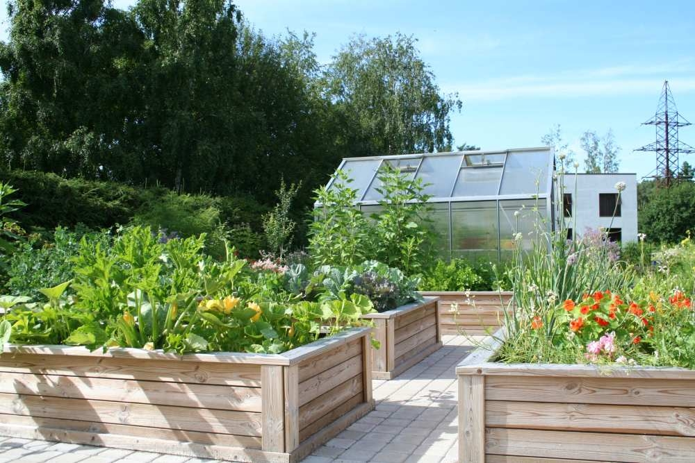 VILLEM GARDEN DESIGN aiakujundus, haljastusprojektid