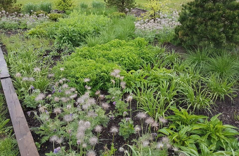 AIAHALDJAD aiakujundus, haljastustööd