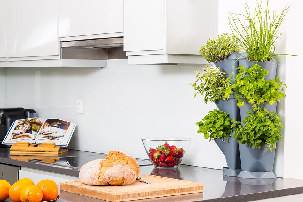 GARDELINO OÜ kastmissüsteemiga lillepotid, lilleseinad, sisehaljastus