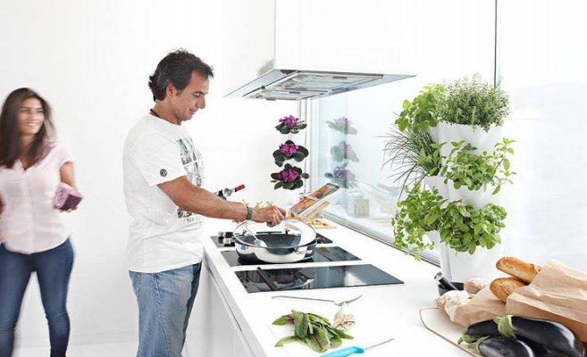 11 - GARDELINO OÜ kastmissüsteemiga lillepotid, lilleseinad