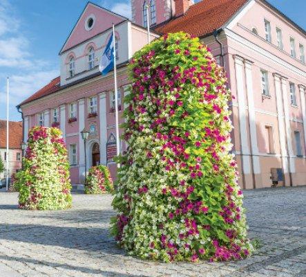 23 - GroWert OÜ taimeseinad, lilletornid, vertikaalhaljastus