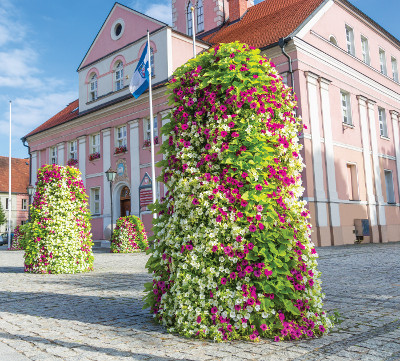 15 - GroWert OÜ taimeseinad, lilletornid, vertikaalhaljastus