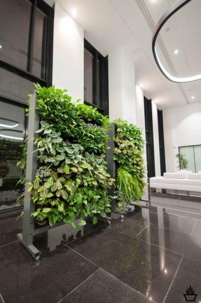5 - GroWert OÜ taimeseinad, lilletornid, vertikaalhaljastus
