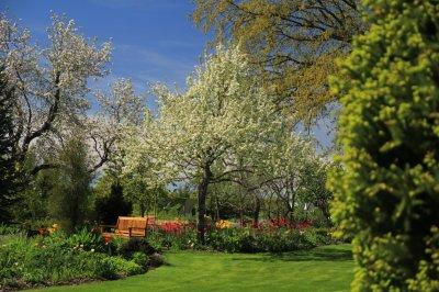 10 - Palusalu Aiad OÜ aia planeerimine, aia hooldus, aiakujunduse kursused